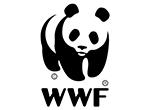 49 WWF